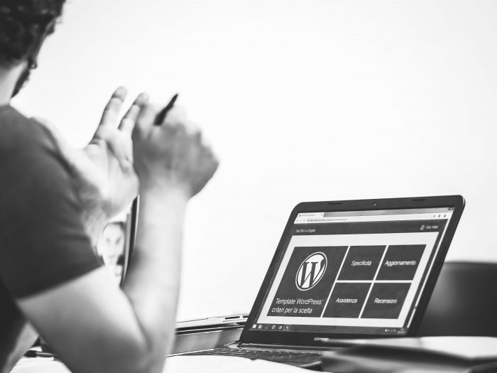 A person working on WordPress